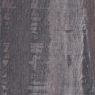 ARPA 4558 Марёный Дуб