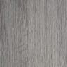 ARPA 4574 Зимний Дуб